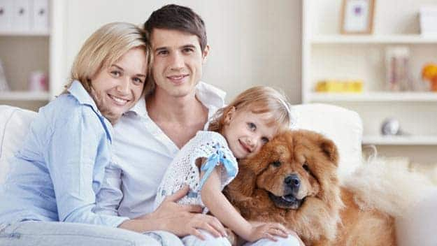 Wills & Trusts dog-young-family Direct Wills Aldgate